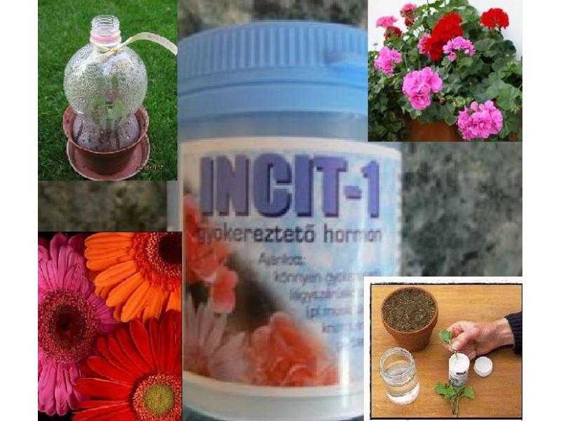 PRODAJEM HORMON ZA OŽILJAVANJE REZNICA Hormon-za-oziljavanje-reznica-Incit-1-_slika_XL_1098435